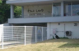 千葉県館山市で愛犬と泊まれる宿