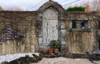 静岡県 ペットと泊まれる宿 別邸石の家