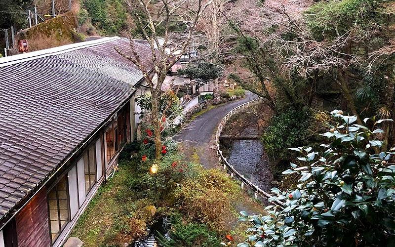 静岡県静岡市で愛犬と泊まれる宿