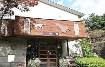 栃木県 ペットと泊まれるお宿 ペット&スパホテル那須ワン