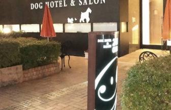 犬と泊まれる宿 大阪府 「ホテルヒラリーズ」「レクラ」