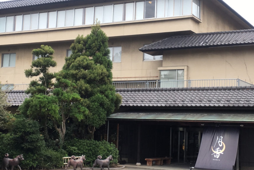 福井県あらわ市でペットと泊まれるおすすめの宿「旅館月香」
