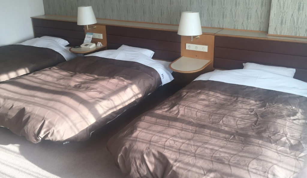 犬と泊まれる宿 長野県 白樺リゾート池の平ホテル