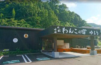 九州大分県別府で愛犬と宿泊