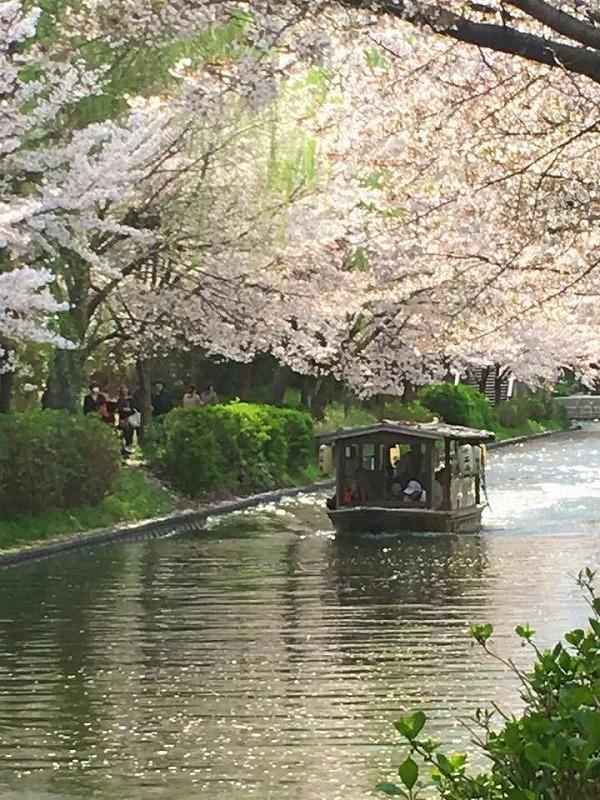 京都 伏見でペット泊まれる宿