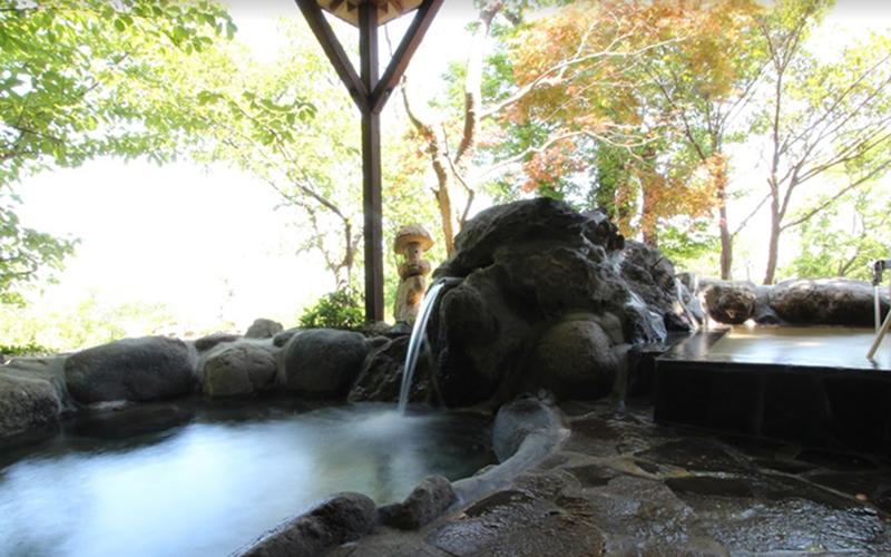 伊豆高原で犬と泊まれる宿
