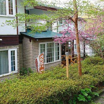 神奈川県箱根温泉でペットと泊まれる宿