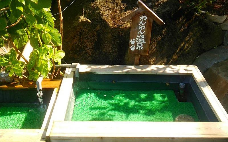 静岡県伊豆の国市で愛犬と宿泊