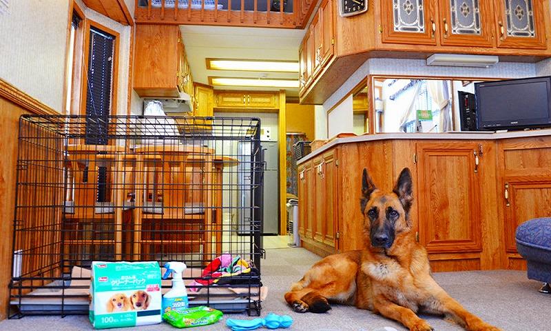 長野県黒姫高原で犬と泊まれる宿