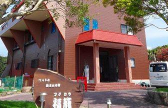和歌山県潮岬で犬と泊まれる宿
