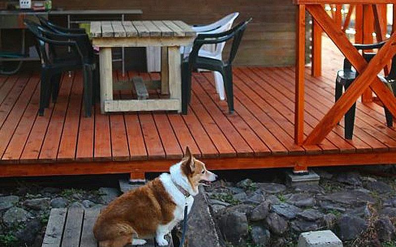 和歌山県日高川でペット宿泊