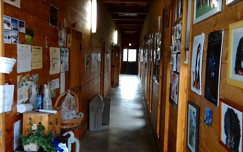 兵庫県但馬地方でペットと泊まれる宿