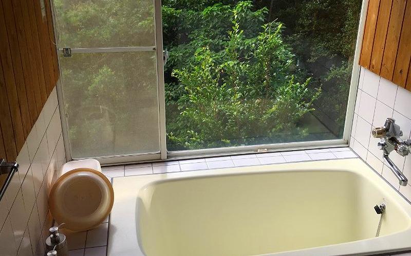 静岡県南伊豆で犬と泊まれる宿