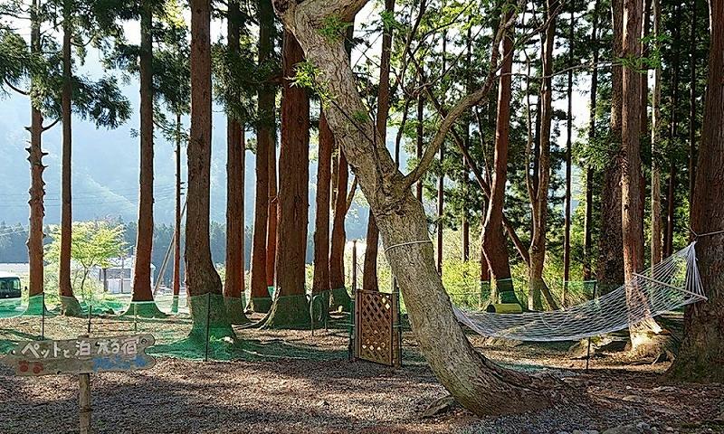 新潟県越後湯沢でペットと泊まれる宿