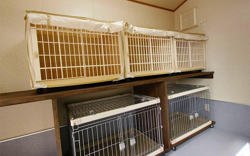 兵庫県ハチ北高原でペットと泊まれる宿