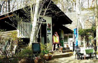 山梨県八ヶ岳・清里高原でペット宿泊