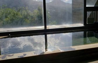 箱根でペットと泊まれる宿