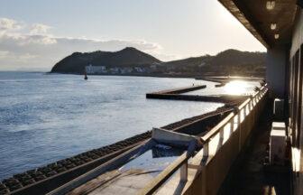旅館水の 口コミ 徳島県小鳴門海峡でペットと泊まれる宿