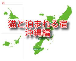 猫と泊まれる宿  4選 沖縄編