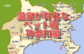 温泉が有名でペットと泊まれる宿 8選 神奈川編