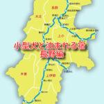 小型犬とペットと泊まれる宿 6選 長野県