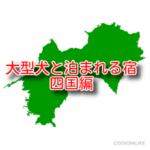 大型犬 ペットと泊まれる宿 5選 四国編