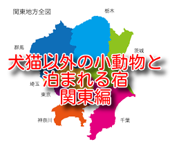 犬猫以外のペットと泊まれる宿 4選 関東編